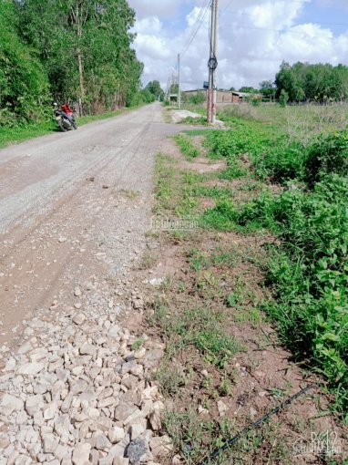 Bán gấp 120m2 đất Tân Hòa, Phú Mỹ mặt tiền đường nhựa 6m cách QL 51 500m giá đầu tư ảnh 0