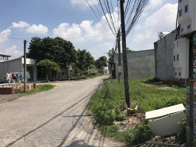 Bán gấp lô đất 242 m2 xã Lộc An, Long Thành, Đồng Nai sổ riêng thổ cư 160m ảnh 0