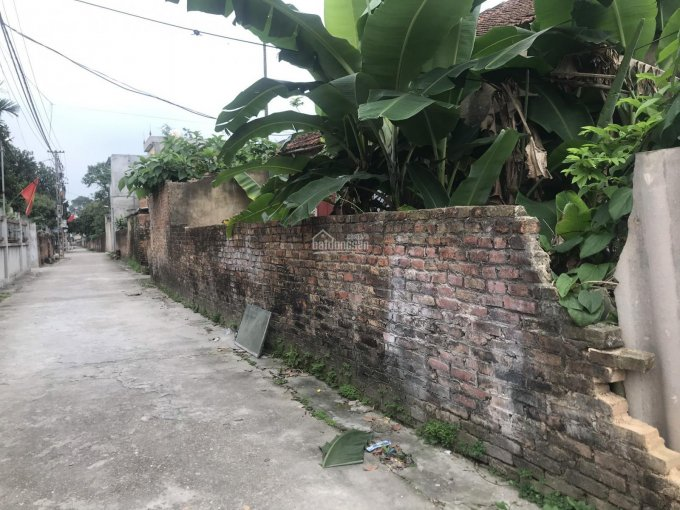 81m2 trục chính Ấp Bắc Thượng - Quang Tiến - Sóc Sơn. Lh: 0388 811 362 ảnh 0