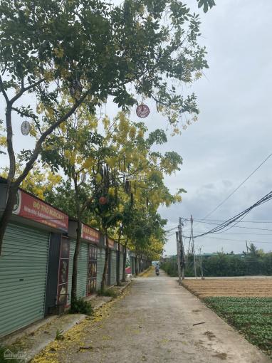 Bán nhanh đất Hồng Vân, Thường Tín thuận tiện kinh doanh ảnh 0