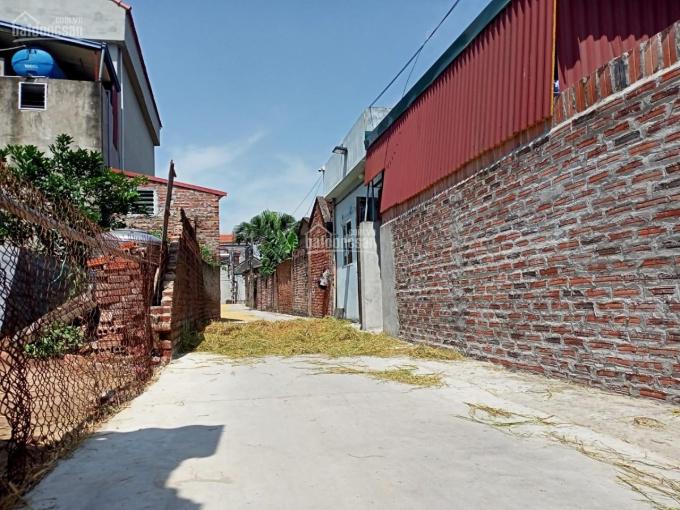Chính chủ 100m2 đất Nam Hồng Đông Anh, MT 5m đường ôtô, giá 1 tỷ 950 triệu ảnh 0
