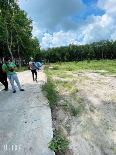 Bán đất gần KĐT Phúc Hưng và KCN Minh Hưng 3, đất nằm cách đường liên tỉnh Tây Ninh chỉ 200m ảnh 0
