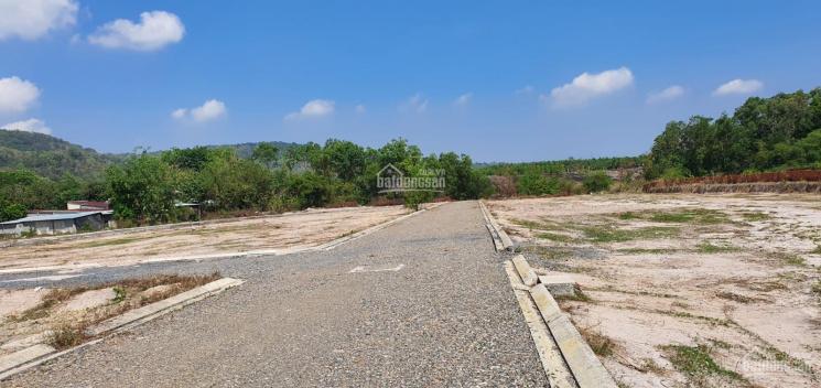 1,75 tỷ lô đất vườn ven suối 626m2 SHR gần Núi Dinh, Tân Hòa, thị xã Phú Mỹ, Bà Rịa - Vũng Tàu ảnh 0