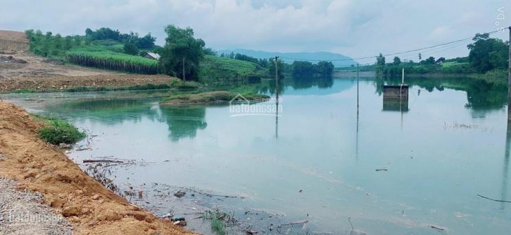Cần bán gấp lô đất 6182m2 đất giáp hồ - tại Cao Phong Hòa Bình ảnh 0