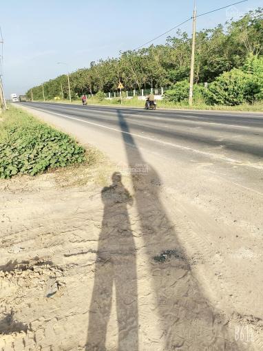 Chính chủ bán đất D2D Lộc An - Bình Sơn, Long Thành giá 2 tỷ ảnh 0