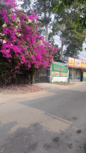 Cần bán gấp căn nhà tại Huỳnh Văn Lũy, thủ Dầu Một, Bình Dương. Mặt đường rộng thích hợp kinh doanh ảnh 0