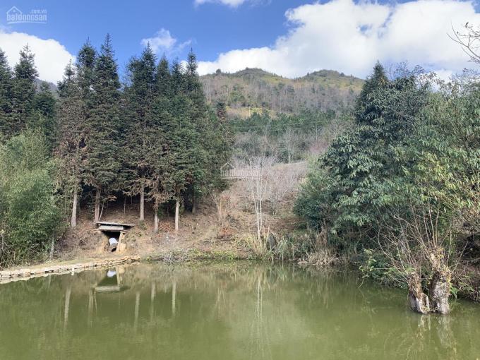 Đất thôn Mò Phú Chải - Khu vực sẽ được cấp sổ đỏ đầu tiên tại Y Tý ảnh 0