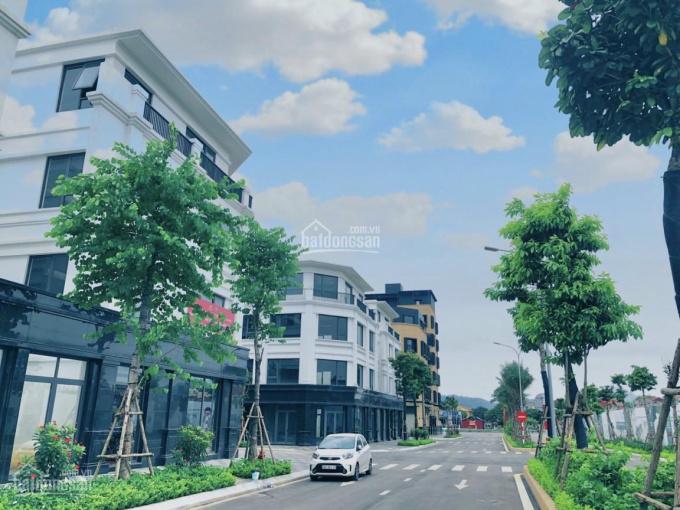 Shophouse tiềm năng sinh lời cực cao - mặt tiền Quốc Lộ 1A - trung tâm thành phố Lạng Sơn ảnh 0