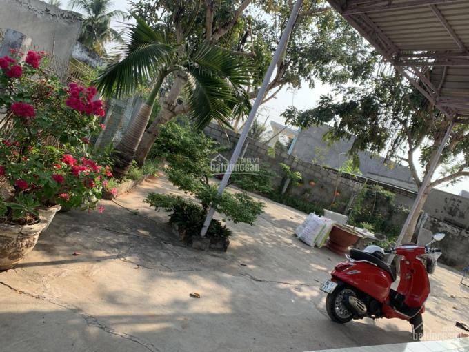 Thanh toán ngôi nhà sân vườn ngay trung tâm Phú Long giá rẻ ảnh 0