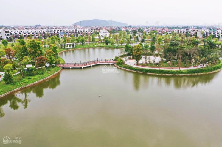 Đất nền dự án Xuân An Green Park - PKD chủ đầu tư ảnh 0