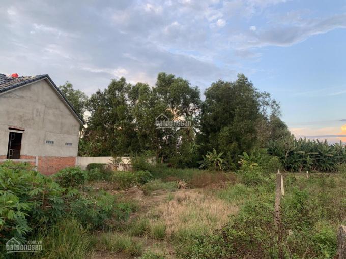 Tôi bán đất TT Cần Giuộc, DT 609m2 đất thổ + vườn + lúa đối diện chợ Kế Mỹ, cách QL50 100m. 2,9tỷ ảnh 0
