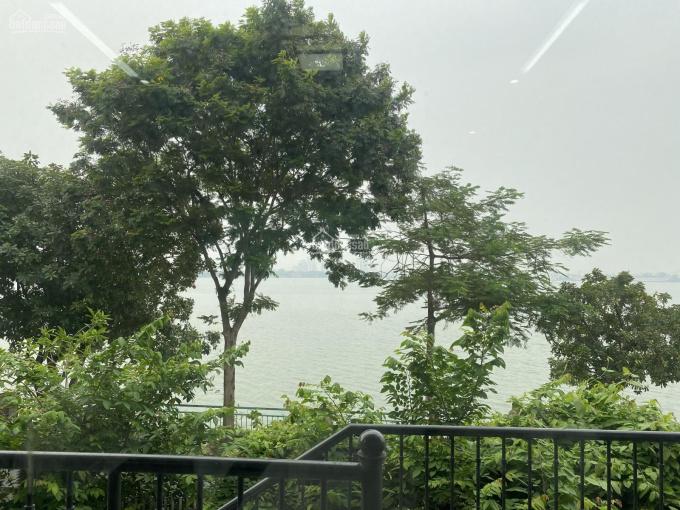 Bán nhà view Hồ Tây, DT 350m2, MT 12m, đường 3 ô tô, vỉa hè, giá 350 tr/m2 ảnh 0