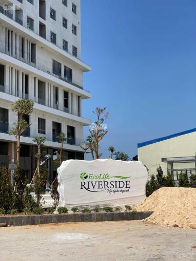 Bán căn hộ 65m2 Ecolife Riverside Quy Nhơn - giá gốc CĐT - tháng 6 vào ở - 0965.268.349 ảnh 0