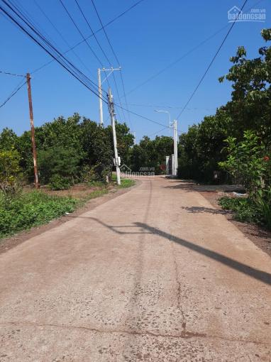 Cần bán gấp đất vườn trái cây đường Cây Da - Bình Lộc, mặt tiền đường bê tông 14m, đường bê tông 4m ảnh 0