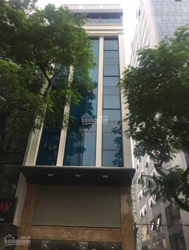 Nhà mặt phố Phan Kế Bính 90m2, 6 tầng, MT 7m, thang máy, KD cực tốt, nhỉnh 32 tỷ thương lượng ảnh 0