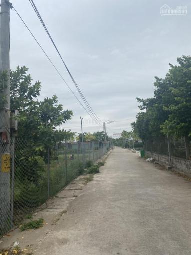 Bán mảnh đất 2500m2 khu du lịch sinh thái Hồng Vân giá đầu tư. LH 0917.366.060 ảnh 0