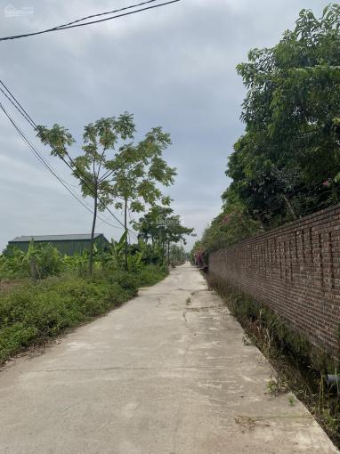 Bán mảnh đất 6000m2 khu du lịch sinh thái Hồng Vân giá đầu tư. LH 0917.366.060 ảnh 0