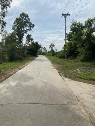 Bán đất phân lô Ninh Hưng, Thị xã Ninh Hòa gần cách Quốc lộ 1A - 4km ảnh 0
