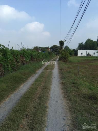 Cần bán gấp đất 955m2 thổ cư 100% giá 3,5 tỷ TL, đường 6m, xã Mỹ Hạnh Bắc, Đức Hòa, Long An ảnh 0