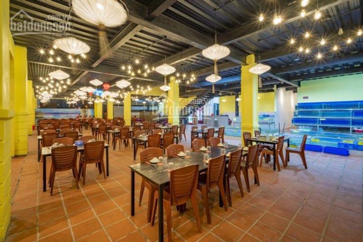 Cho thuê nhà mặt phố Nguyễn Khánh Toàn DT 70m2 x 6T MT 8m thông sàn vị trí đẹp vỉa hè rộng giá 40tr ảnh 0