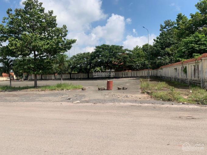 8200m2 đất SKC vuông vức, đường 2 xe container né nhau tại Phước Tân ảnh 0