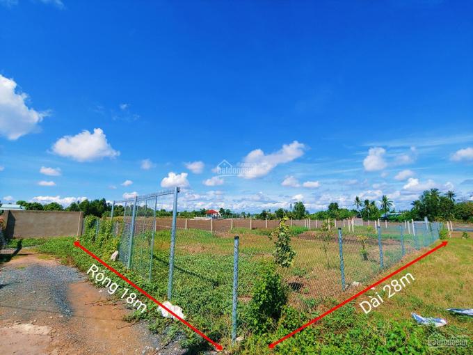 500m2 đất làm nhà vườn ngay thị trấn Cần Giuộc, SHR, giá chỉ 3,2tr/m2 ảnh 0