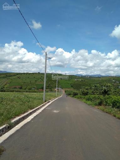 Đất trung tâm thành phố bảo lộc 110m2 900tr phường Lộc Phát, SHR, full thổ cư ảnh 0
