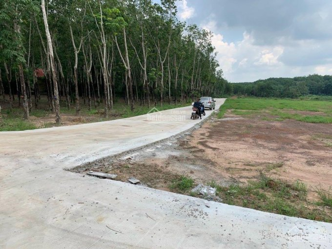 Bán đất chính chủ phường Minh Hưng thị xã Chơn Thành cách KDC Đại Nam đúng 500m. LH 0357343195 ảnh 0