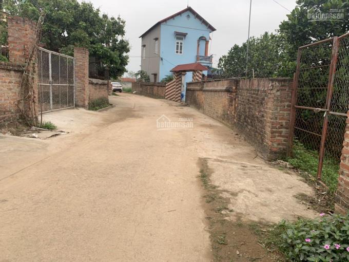 Bán đất tặng nhà 320m2 đất thổ cư sổ đỏ có nhà cấp 4 ba gian tại thôn Thái Lai xã Minh Trí Sóc Sơn ảnh 0