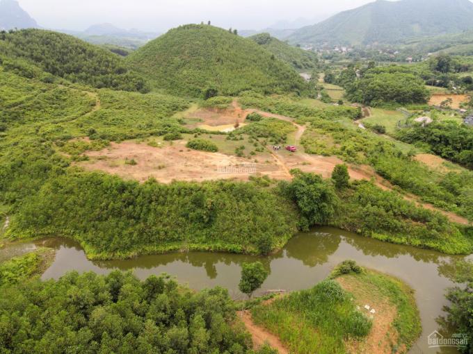Bán nhanh 6.5ha đất trang trại nghỉ dưỡng tại Kim Bôi ảnh 0