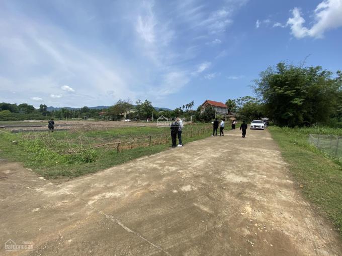Chính chủ bán lô mặt đường Tỉnh lộ 317C Thanh Thủy, Phú Thọ ảnh 0