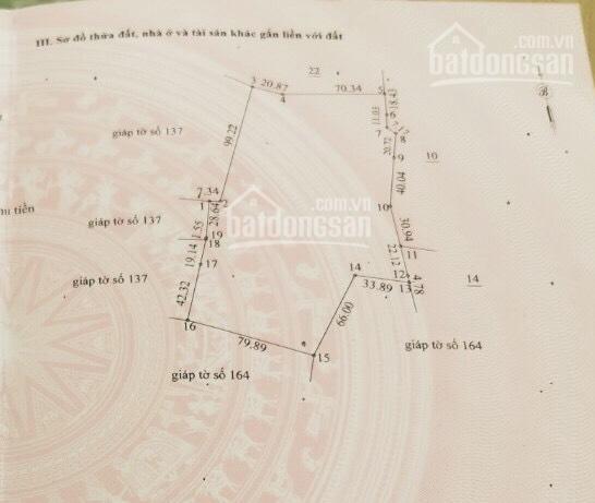 Bán đất vị trí đẹp mặt tiền đường 716 ngay xóm dân cư, TP. Phan Thiết. Liên hệ: 05.66.66.66.88 ảnh 0