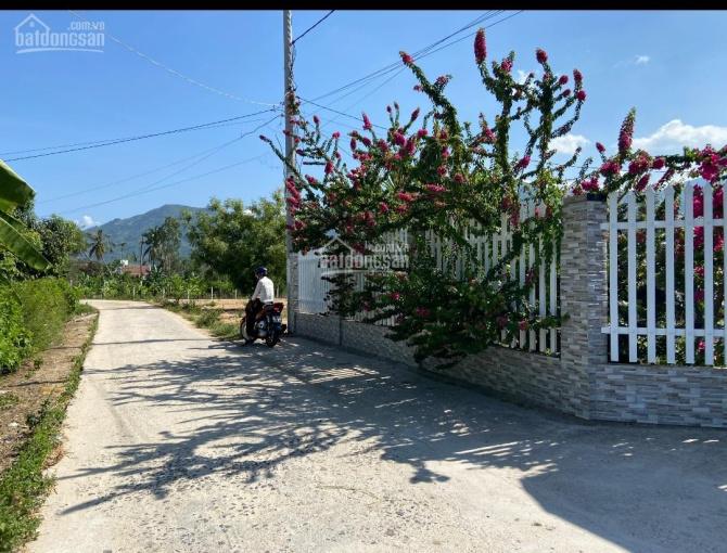 Giá đầu tư - sổ hồng riêng - sát HL39 - khu dân cư - Suối Tiên, Diên Khánh ảnh 0