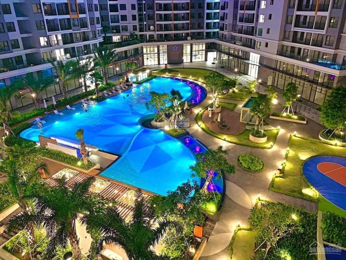 Cho thuê nhiều căn hộ Safira giá chỉ từ 6,5tr/tháng, LH: 0909167641 Nhung ảnh 0