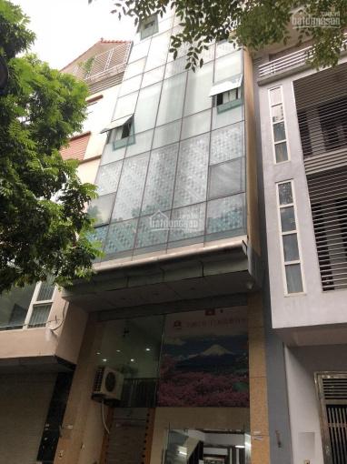 Cho thuê nhà Văn Quán, 65m2 x 7.5T thông sàn, thang máy, làm văn phòng, dạy học, kho ảnh 0