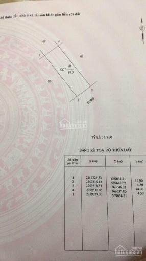 Bán mảnh đất KĐT Dệt, S: 63m2, mặt 4,5m, giá 65 tr/m2, hướng Đông Nam ảnh 0