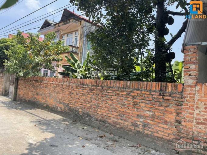 Chính chủ bán đất đường trục chính thôn Bắc Thượng rộng 5 mét giá hơn 500 triệu ảnh 0