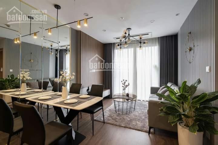 Tổng hợp quỹ căn cho thuê Vinhomes Smart City giá rẻ nhất thị trường Studio - 1 - 2 - 3PN ảnh 0