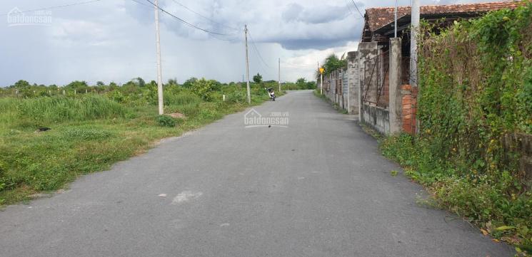 Bán đất thổ cư đường Bùi Thị Điệt, xã Phạm Văn Cội ảnh 0