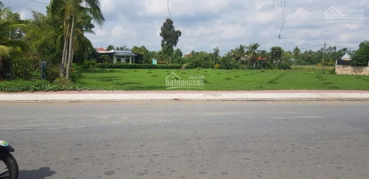 Cần bán đất mặt tiền đường Đoàn Nguyễn Tuấn 3600m2, Hưng Long, Bình Chánh ảnh 0