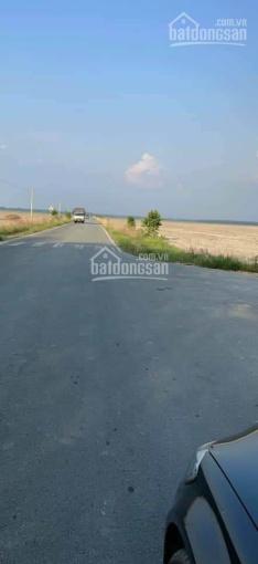 Cần bán 36.000 m2 đất trong khu công nghiệp Đồng Xoài, Bình Phước ảnh 0