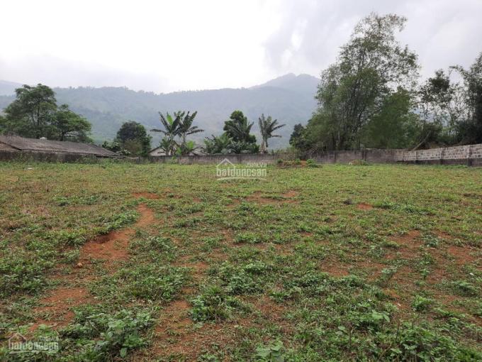 Bán gấp 1100m2 đất thổ cư xung quanh các homestay tại Lương Sơn, Hòa Bình ảnh 0