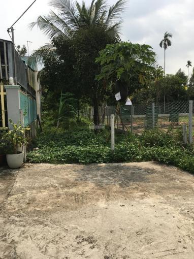 Chính chủ cần bán gấp 01 lô đất trong khu dân cư ấp Bình Lâm, xã Lộc An, Long Thành, Đồng Nai ảnh 0