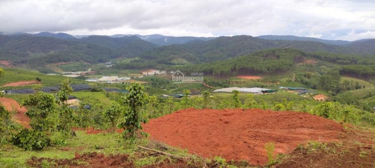 Đất Đạ sar, huyện Lạc Dương, tỉnh Lâm Đồng. Đất view mà giá đầu tư ảnh 0