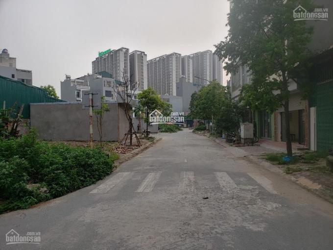 Bán đất khu đấu giá Tứ Hiệp, Thanh Trì - DT: 60 - 150m2 ảnh 0