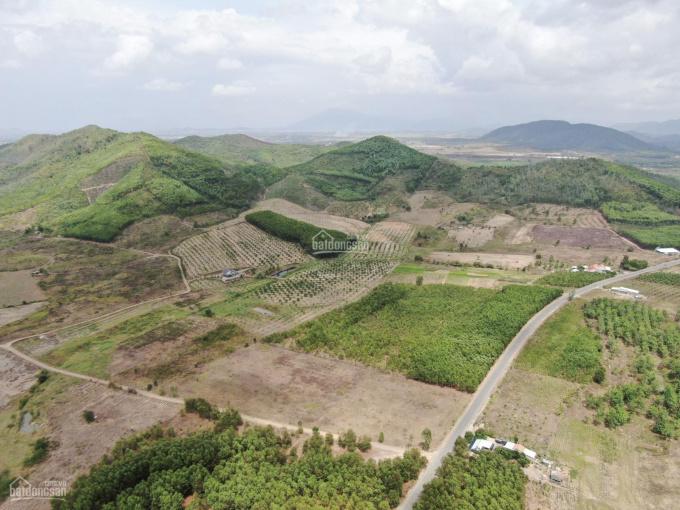 Cần sang lại miếng đất 7.2hec Thôn Tân Sơn, Xã Ninh Xuân, Thị xã Ninh Hoà, Khánh Hoà