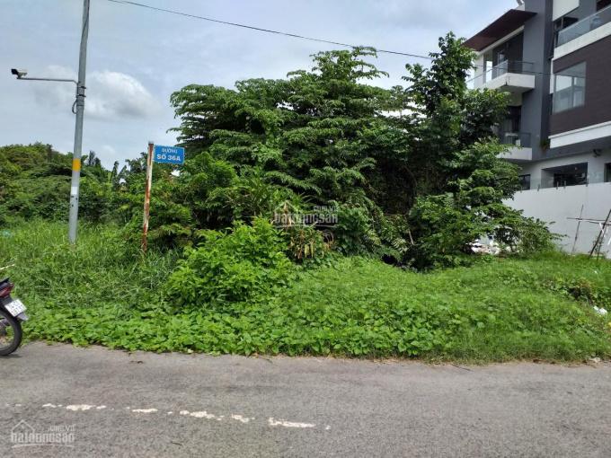 Cho thuê đất 3 mặt tiền, đối diện công viên Cao Đức Lân, P. An Phú, Q2 15x20m. HĐ dài hạn 5 - 7 năm ảnh 0
