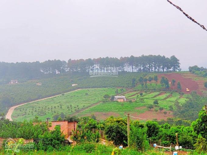 Cần bán đất thị trấn Nam Ban, giá 939tr có 200m2 đất thổ cư ảnh 0