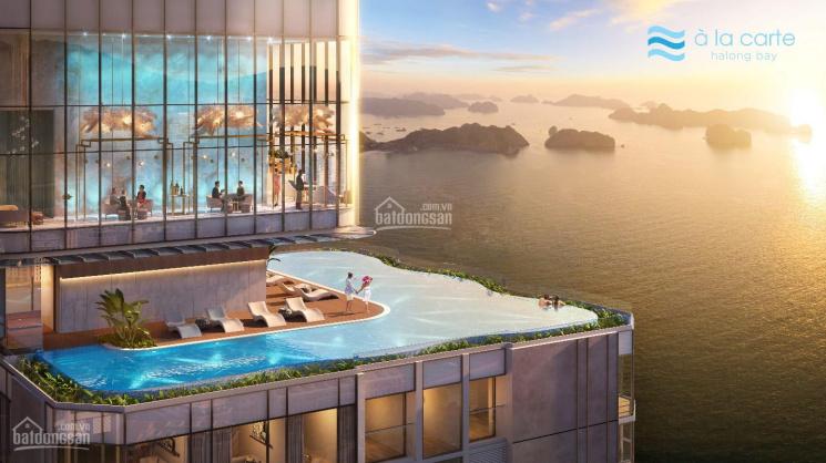 Chính chủ cần bán căn hộ b3303 mặt biển A La Carte chỉ 2,x tỷ full nội thất. LH: 0843349449 ảnh 0