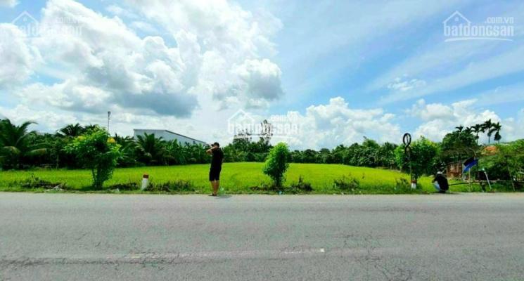 Bán đất công mặt tiền đường Quốc lộ 61C - đoạn 2000, Châu Thành A ảnh 0
